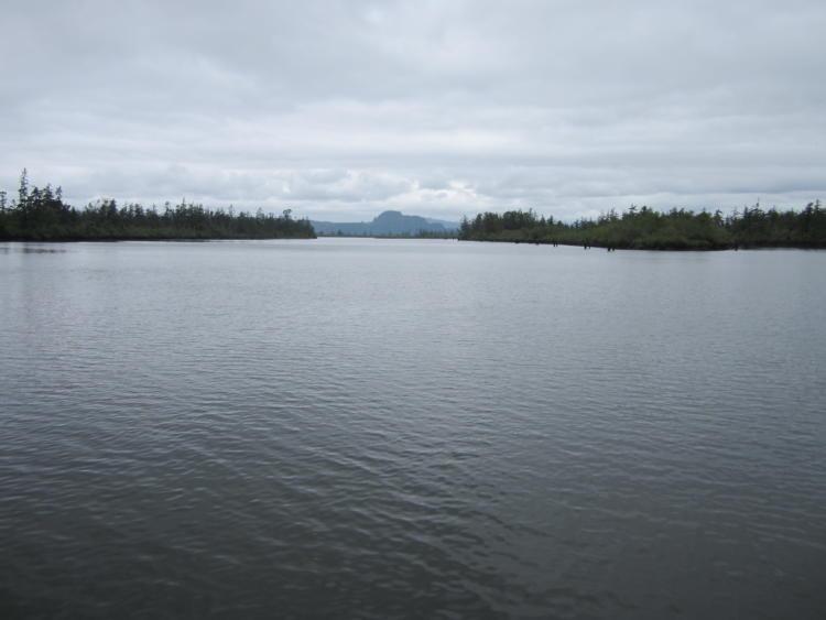 The Columbia River near the Blind Slough in Oregon's Coast Range Ecoregion.