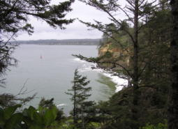 Chicken Point, Coos Bay
