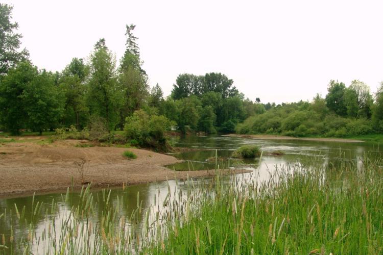 Pudding River COA