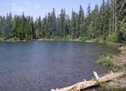 Mt Jefferson Wilderness, North area