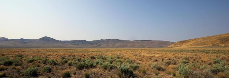 Upper South Fork Malheur Area (COA 188)