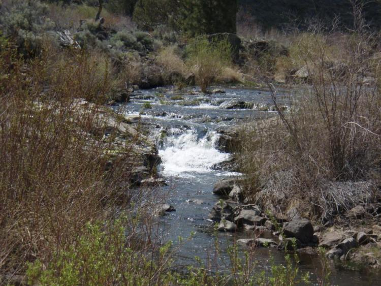 Warner Basin Wetlands