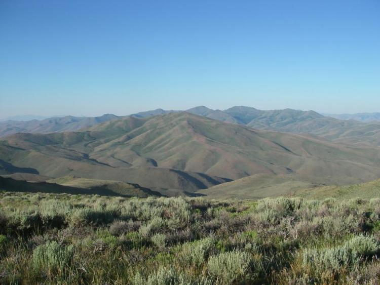 Northern Basin And Range Oregon Conservation Strategy