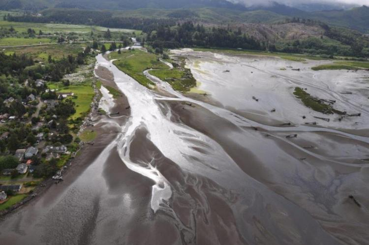 Estuary Strategy Habitat, Siletz Bay
