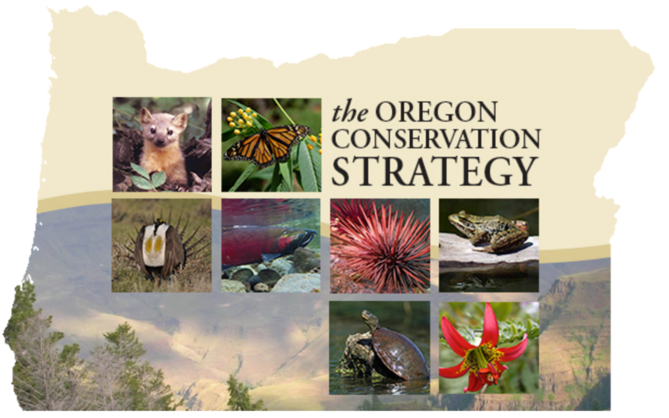 Cover for the Oregon Conservation Strategy