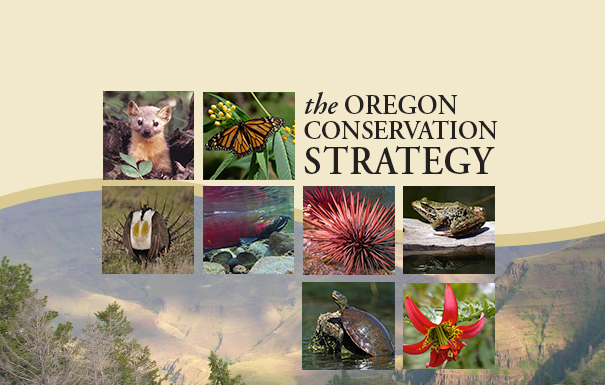 Oregon Conservation Strategy – A Blueprint for Conservation
