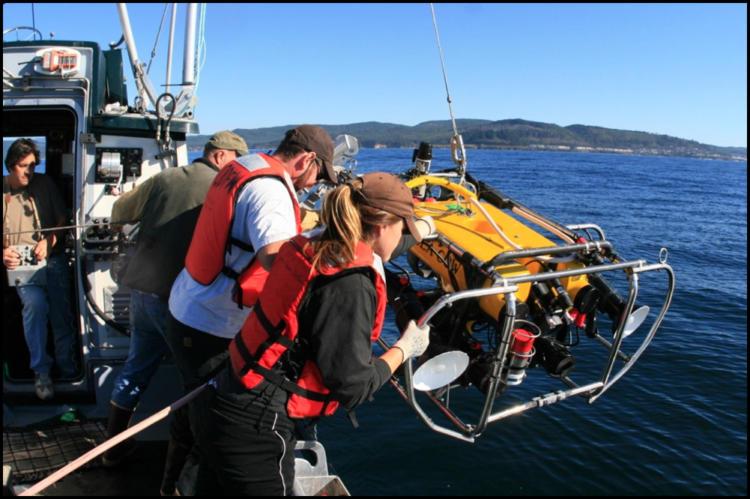 ROV being deployed.