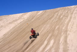 ATV riding in the dunes of the Siuslaw National Forest.