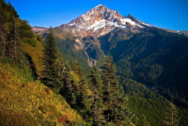West Cascades Ecoregion